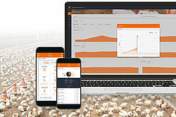Análisis de los datos de producción con FarmBookpro
