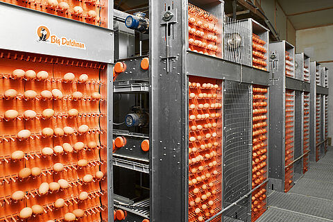 Sistemas de recolección de huevos