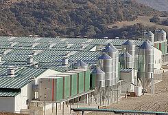 Unidades de filtración AirProTec instaladas en una granja de cría en España