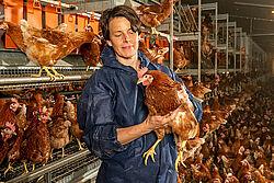 En la nave: Mujer sostiene una gallina en brazos.