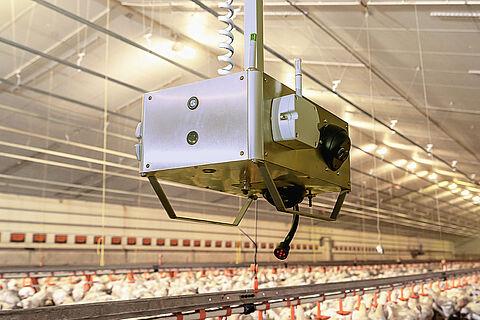 [¡NUEVO!] Robot de análisis ChickenBoy