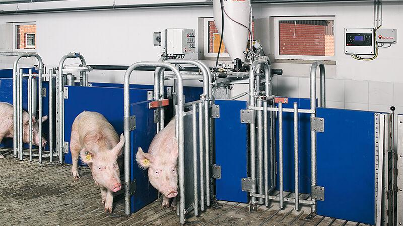 Sistema de alimentación y sistema de manejo: Alimentación controlada por ordenador Callmatic 2