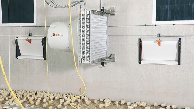Climatización de naves: Temperaturas óptimas en la nave avícola con HeatMaster
