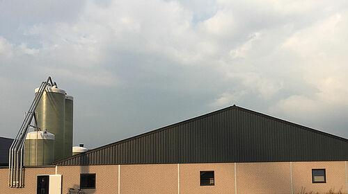 Vista exterior de nave para manejo de reproductoras pesadas