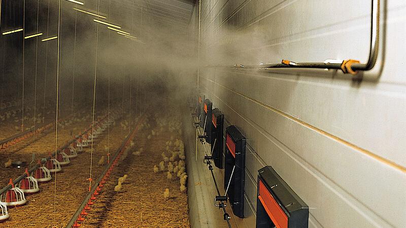 Equipamiento avícola: Fogging Cooler par un clima sano en la nave