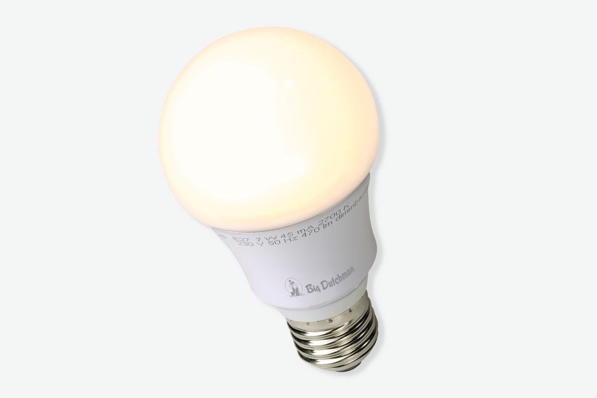 Lámpara Led Y Regulador De Intensidad Led Ers Engorde De Aves